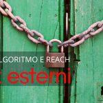 link esterni su linkedin